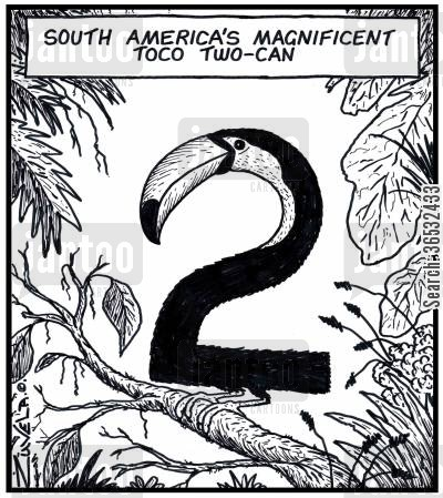 canned cartoon humor: South America's magnificent Toco Two-can.