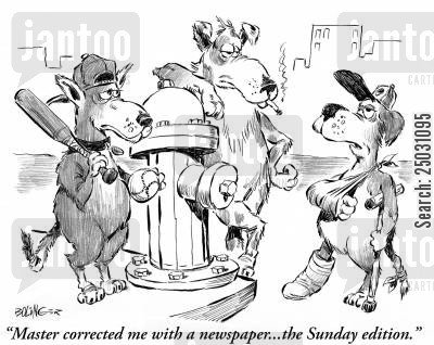 sunday paper cartoon humor: 'Master corrected me with a newspaper... the Sunday Edition.'