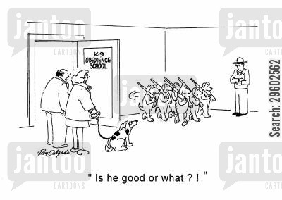 dog trainers cartoon humor: 'Is he good or what?!'