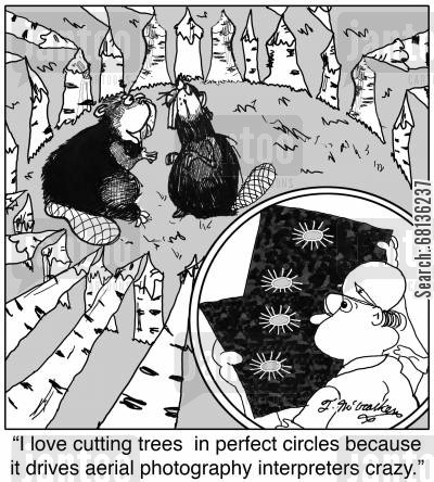 beaver dams cartoon humor: 'I love cutting trees in perfect circles because it drives aerial photography interpreters crazy.'
