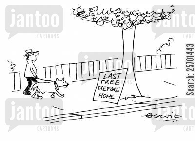 toilet stop cartoon humor: 'Last tree before home.'