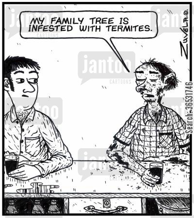 family trees cartoon humor: Man: 'My family tree is infested with termites.'