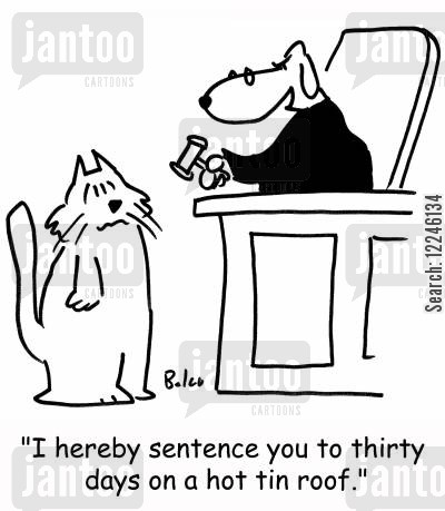 hot tin roof cartoon humor: 'I hereby sentence you to thirty days on a hot tin roof.'