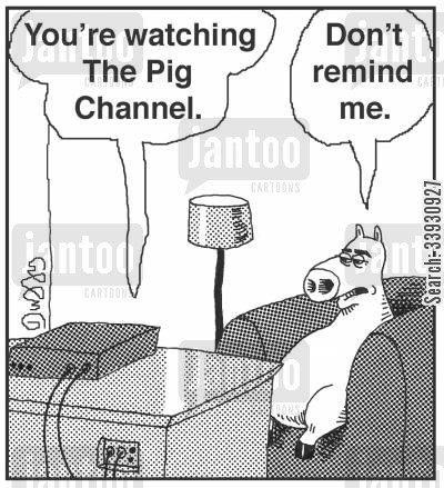 tv channels cartoon humor: 'You're watching The Pig Channel.' 'Don't remind me.'
