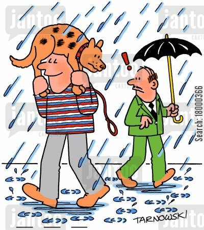 shelter cartoon humor: Dog umbrella.