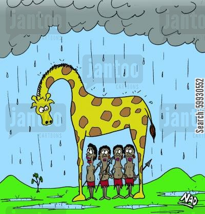 rain showers cartoon humor: Giraffe Umbrella