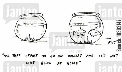 no place like home cartoon humor: 'All that effort to go on holiday and it's just like being at home.'