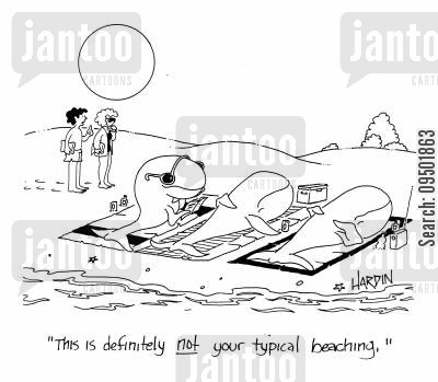 beachings cartoon humor: 'This is definitely not your typical beaching.'