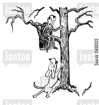barking up the wrong tree cartoon humor: Vampire stuck up a tree by a dog