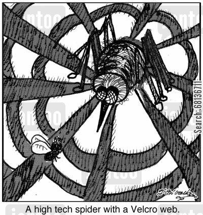 fly trap cartoon humor: A high tech spider with a Velcro web.