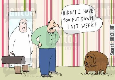 put down cartoon humor: 'Didn't I have you put down last week?'