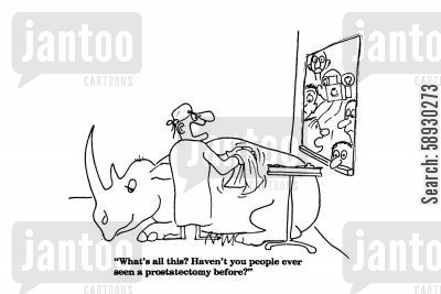 rhino cartoon humor: 'What's all this? Haven't you people ever seen a prostatectomy before?'