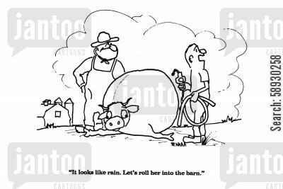 ill animal cartoon humor: 'It looks like rain. Let's roll her into the barn.'