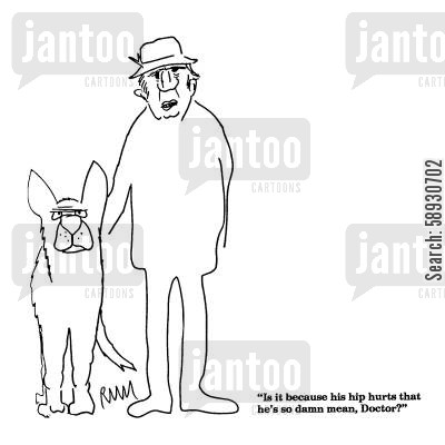 alsatians cartoon humor: 'Is it because his hip hurts that he's so damn mean, Doctor?'