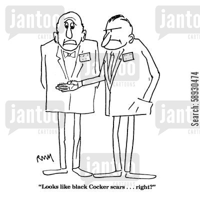 scars cartoon humor: 'Looks like black Cocker scars...right?'