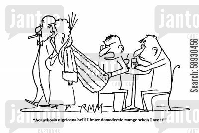 fur coats cartoon humor: 'Acanthosis nigricans hell! I know demodectic mange when I see it!'