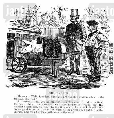 victorian farms cartoon humor: The Invalid