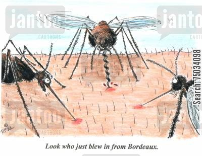 mosquito cartoon humor: 'Look who just blew in from Bordeaux.'