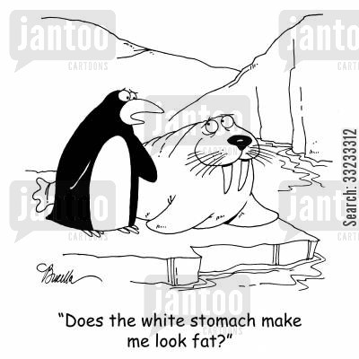 looking fat cartoon humor: 'Does the white stomach make me look fat?'
