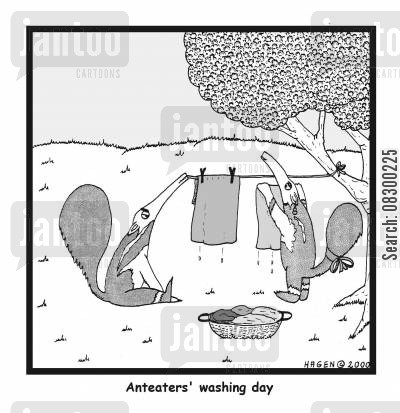 effficiency cartoon humor: Anteater's Washing Day