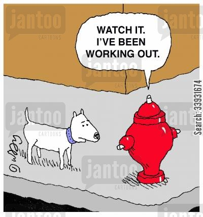 tough guy cartoon humor: 'Watch it. I've been working out.'