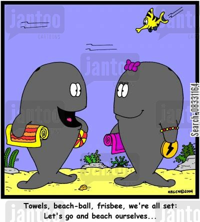 beached whales cartoon humor: 'Towels, beach-ball, frisbee, we're all set: Let's go and beach ourselves...'