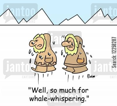 horse whisperers cartoon humor: 'Well, so much for whale-whispering.'