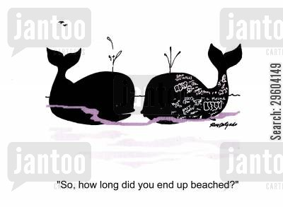 tagging cartoon humor: 'So, how long did you end up beached?'