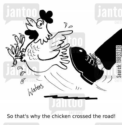 kicked cartoon humor: So that's why the chicken crossed the road!