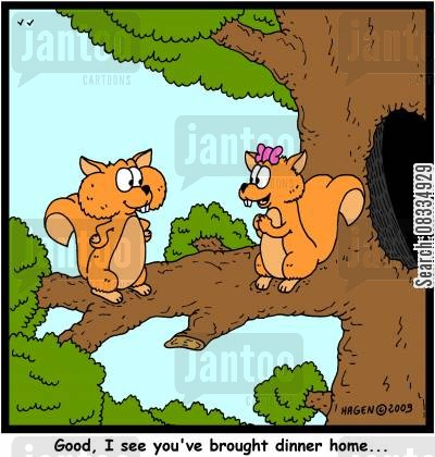 squirrel cheeks cartoon humor: Good, I see you've brought dinner home...