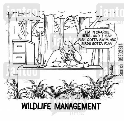 office space cartoon humor: Wildlife Management.