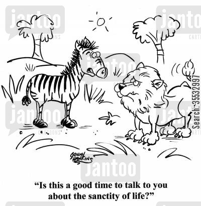 conservation cartoon humor: Zebra to lion: 'Is this a good time to talk to you about the sanctity of life?'