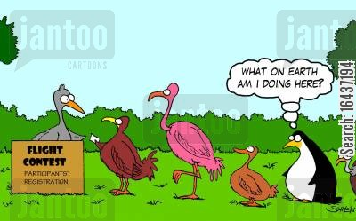 ground birds cartoon humor: 'What on Earth am I doing here?'