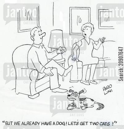 family dog cartoon humor: 'But we already have a dog! Lets get two cats!'
