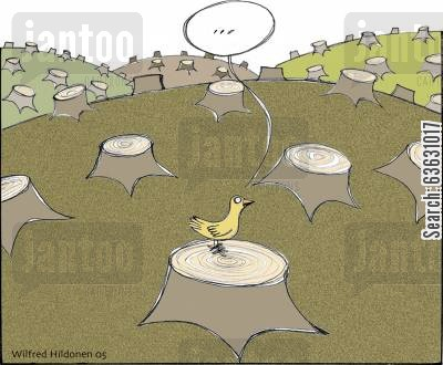 loggers cartoon humor: The last bird in the last wood...