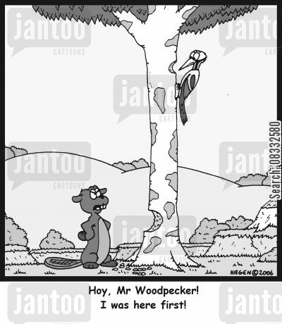arguemnt cartoon humor: 'Hoy, Mr Woodpecker! I was here first!'