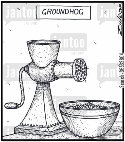 mince cartoon humor: Groundhog - A hog has been minced from a meat grinder.