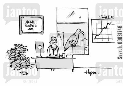 hawks cartoon humor: Acme Toupee Co. - Pile of toupees in corner, hawk on perch by open window - chart showing sales up. - The hawk is stealing toupees off people's heads, driving sales up.