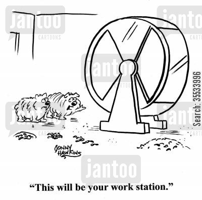 hamster wheel cartoon humor: Hamster to other about wheel: 'This will be your work station.'