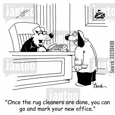 new office cartoon humor: 'Once the rug cleaners are done, you can go and mark your new office.'