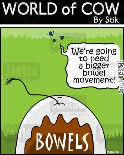 bowel movement cartoon humor: BOWELS: 'We're going to need a bigger bowel movement.'