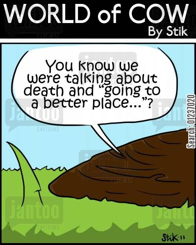 cow poop cartoon humor: You know we were talking about death and 'going to a better place..'?