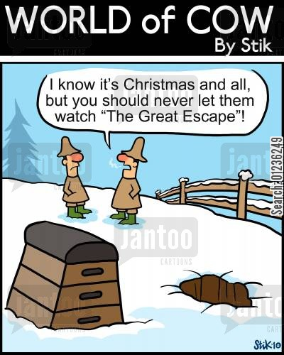 turkey farms cartoon humor: 'I know this is Christmas and all, but you should never let them watch 'The Great Escape'!'