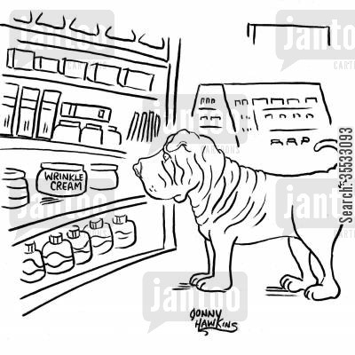 dog ownership cartoon humor: Shar-Pei sees wrinkle cream.