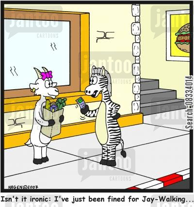 jay walking cartoon humor: 'Isn't it ironic: I've just been fined for Jay-Walking...'