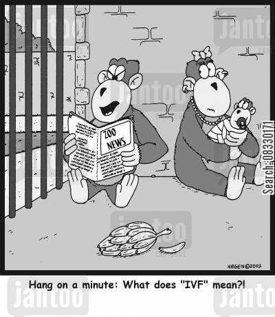 ivf cartoon humor: 'Hang on a minute: What does 'IVF' mean?!'