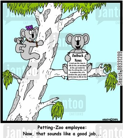 koala bears cartoon humor: 'Petting-Zoo employee: Now, that sounds like a good job...'