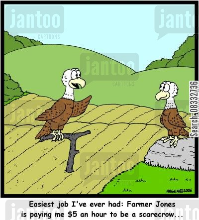 easy jobs cartoon humor: 'Easiest job I've ever had: Farmer Jones is paying me $5 an hour to be a scarecrow...'