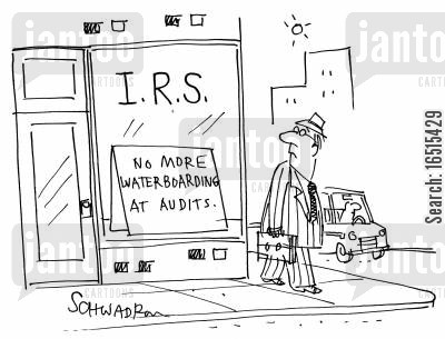 audited cartoon humor: No more waterboarding at audits.