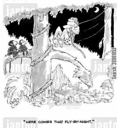 jungle men cartoon humor: 'Here comes that fly-by-night.'